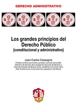 LOS GRANDES PRINCIPIOS DEL DERECHO PÚBLICO